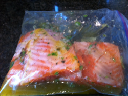 Salmon marinading in ziplock bag