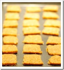 crackers_baking