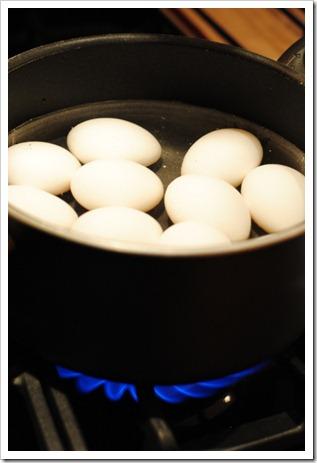 eggsboiling